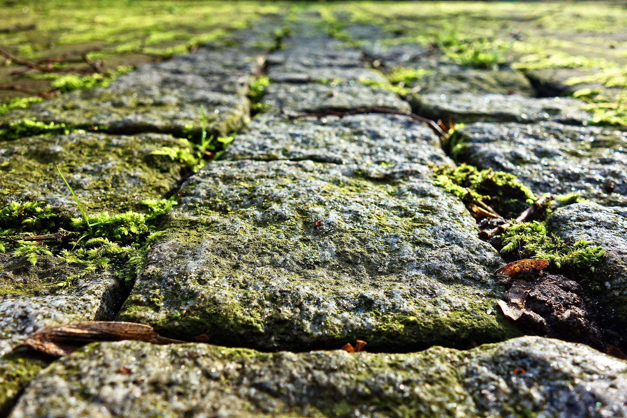Fußweg aus Naturstein